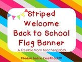 Welcome Back to School Flag Banner