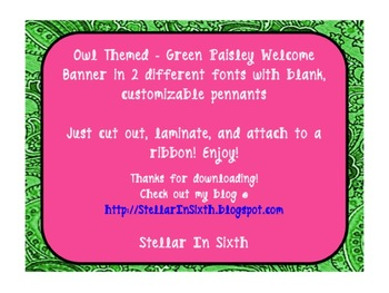 Welcome Banner - Owl Theme - green and pink
