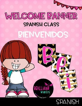 Welcome banner in Spanish / Bienvenidos (Gold glam and pink)