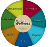 Wellness Unit Plan