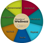 Wellness Unit Plan