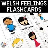 Welsh Feelings and Emotions Flashcards