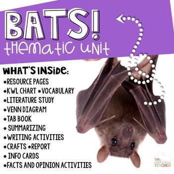 Bat Unit and Activities