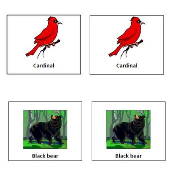West Virginia Symbol Cards and Classroom Posters
