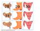Western Calendar Numbers
