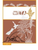 Weta - NZ Insect - Original Poem and Fact File template