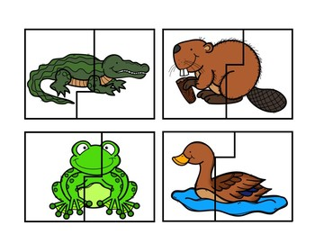 Wetland Animal Puzzle Cards