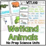Wetland Animal Facts and Habitat
