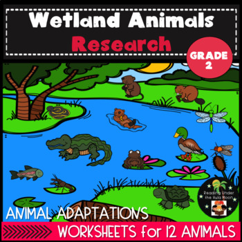 Wetland Animals and Habitat Research Second Grade