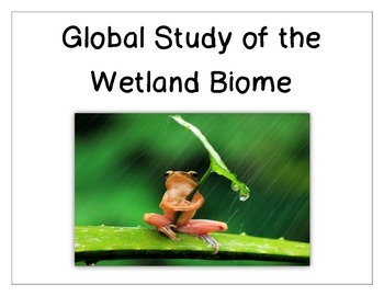 Wetland Biome Project