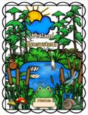 Wetland Ecosystem Lapbook