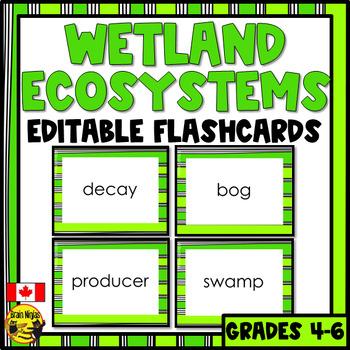 Wetlands Flashcards- Editable