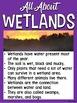 Wetland Habitats