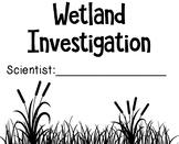 Wetland Investigation