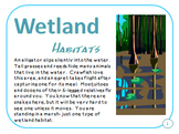 Wetland Marsh and Swamp Habitats Plant and Animal Adaptations PDF Presentation