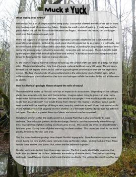 Wetland Soils and How Florida's Geologic History Shaped Them