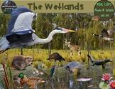 Wetlands Animals Clip Art Habitat Biome Real Clips Photo & Artistic