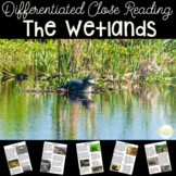 Wetlands Animals | Differentiated Texts | Nonfiction Close Reading
