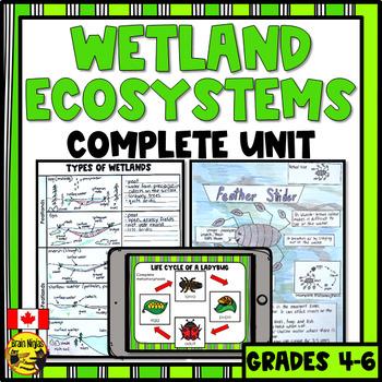Wetlands- Bundle