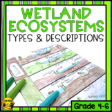Wetlands- Descriptions and Types of Wetlands