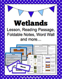 Wetlands: Lesson, Reading Passage, Foldable Notes, Word Wall & more...