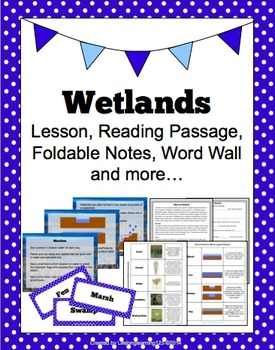 wetlands lesson reading passage foldable notes word wall more. Black Bedroom Furniture Sets. Home Design Ideas