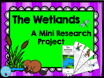 Wetlands Research Project
