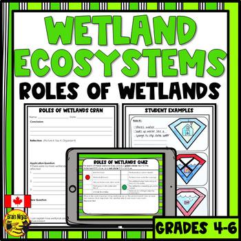 Wetlands- Roles of Wetlands