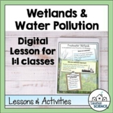 Wetlands and Water Pollution Lesson for Distance Learning