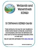 Wetlands and Watersheds BINGO