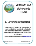 Wetlands and Watersheds BINGO