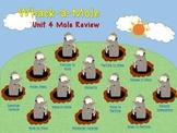 Whack-a-Mole Chemistry Review (Mole Conversions)