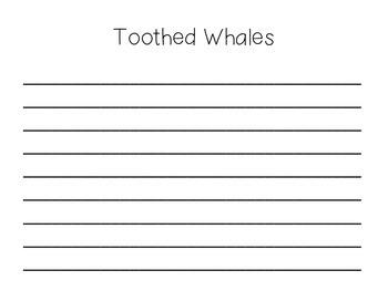 Whale Close Reading and Venn Diagram