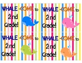 Whale-Come to 2nd Grade Post Cards