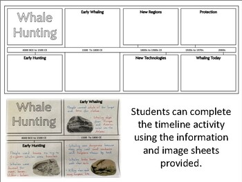 Whale Hunting : Timeline Activity