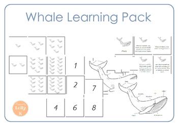 Whale Mini Pack