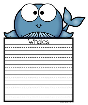 Ocean Animal Research / Report / Whale
