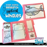 Whale Research Project - An Ocean Animal Research Lapbook