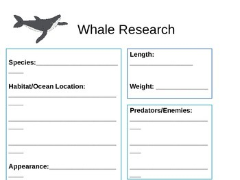 Whale Research Template