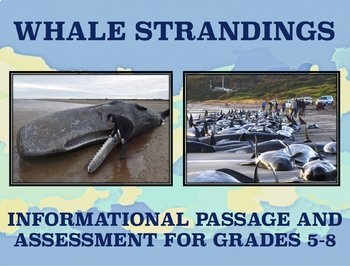 Whale Strandings: Informational Passage and Assessment for Grades 5-8