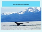 Whales Unit PowerPoint