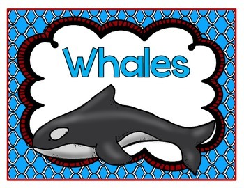 Whales! A Science and ELA Book Study