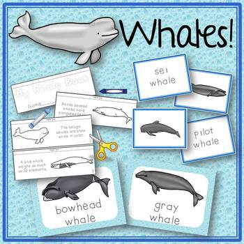 Whale Activities Book to Cut and Create, Posters, Matching