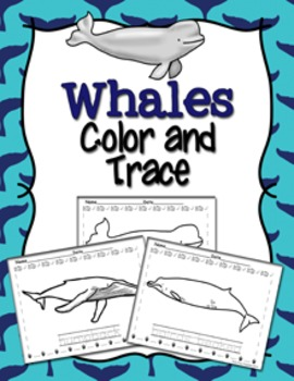 Whales Color And Trace By Pink Posy Paperie Teachers Pay Teachers