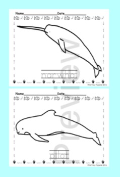 Whales Color and Trace