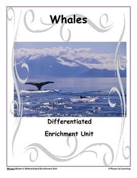 Whales - Differentiated Blooms Enrichment Unit