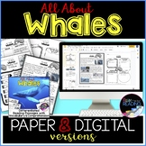 Whales Differentiated *DIGITAL AND PAPER* Reading Comprehe