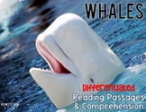 Whales {Differentiated Reading Passages & Questions}