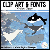 Whales: Digital Clip Art/Graphics
