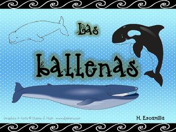 Whales - Las ballenas - in Spanish